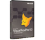 Visual FoxPro Professional